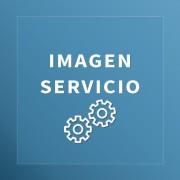 Servicio 4